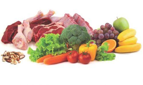 what to eat on paleo diet