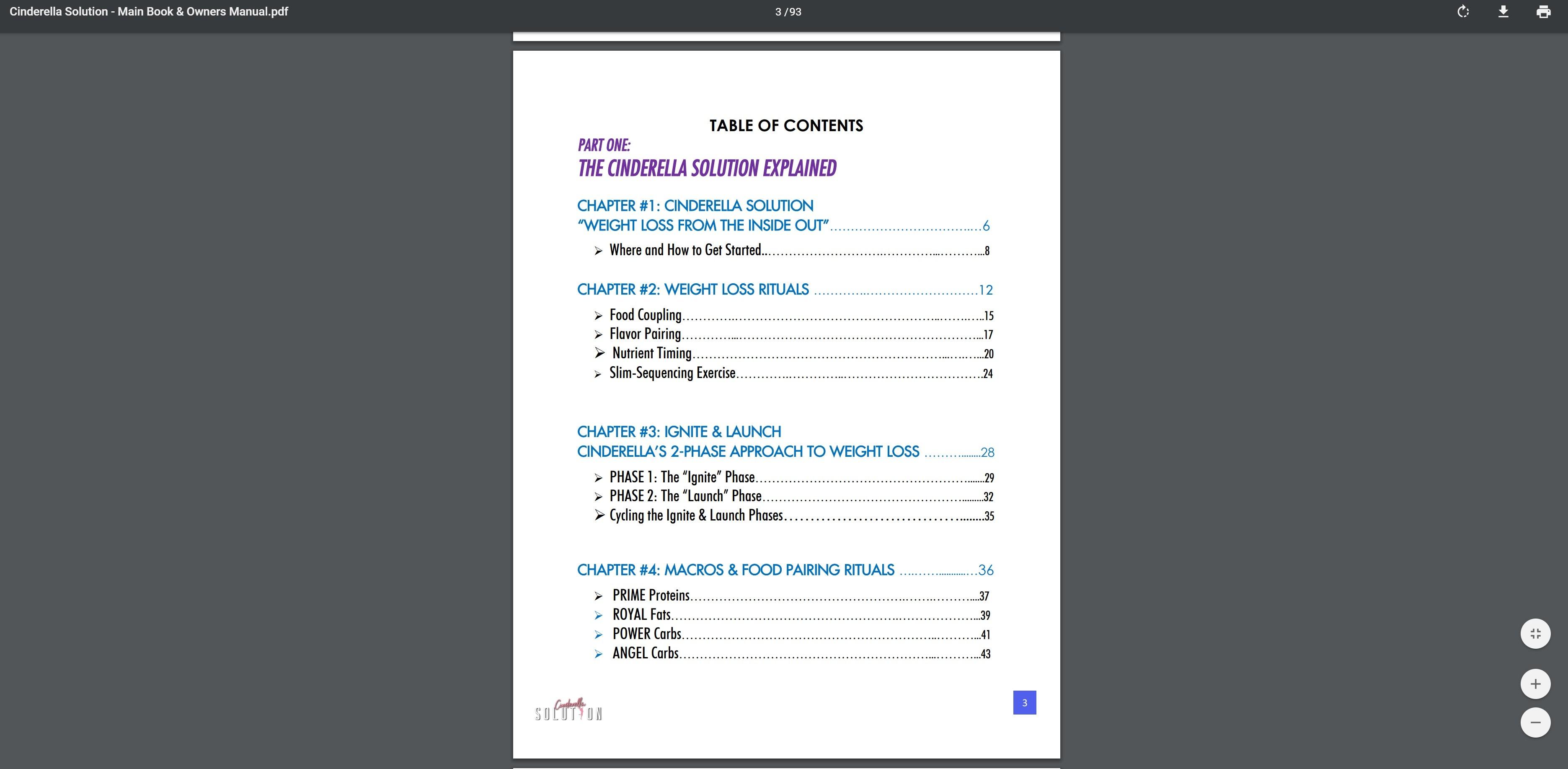 Cinderella Solution program contents